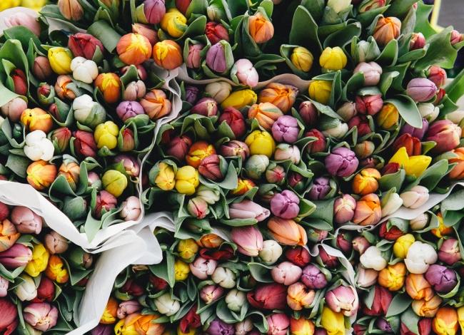 KilianIdsinga-FlowersMarket